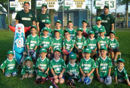 Saint-Maurice: le baseball mineur en mode inscriptions mixtes